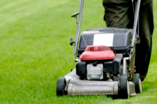 Mowing Service | Tree and Shrub Expert Services