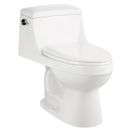 Toilet Installation   Plumbing Service